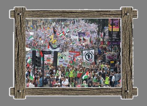 Pali Protest